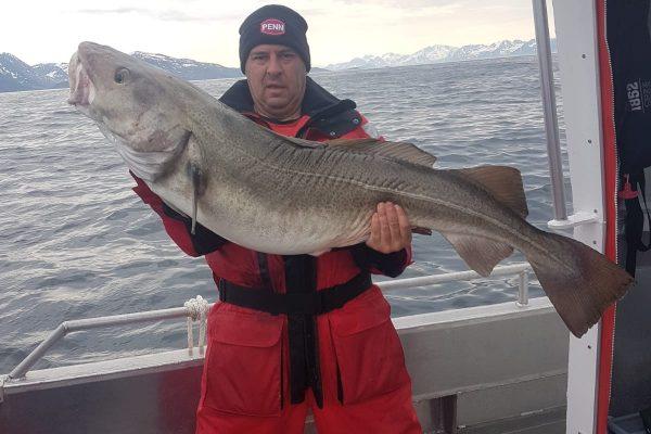 foto 24kg kabeljauw Loppaseafishing